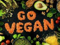 Польза вегетарианских блюд