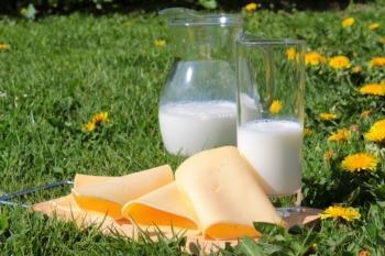 Разоблачение молочных продуктов: действительно ли они полезны?